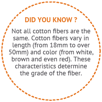 Did You Know - Not All Cotton