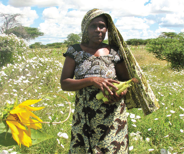 Organic cotton - stories from the field - Devotha Masanja