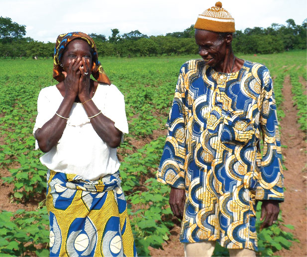 Organic cotton - stories from the field - M Sion Ngoby